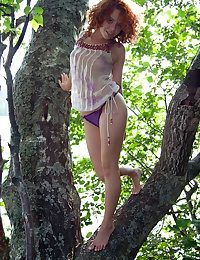 Redhead close to a bush